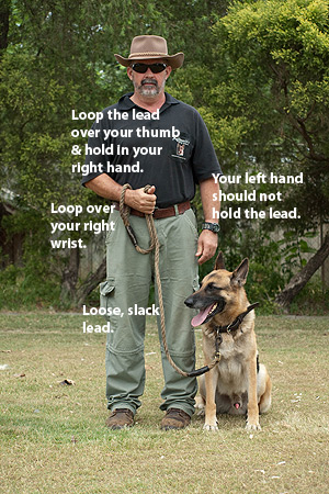 How to hold your lead for Obedience training