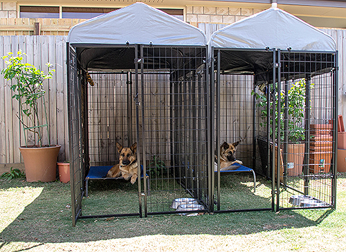 Uptown Outdoor Dog Kennels provide shade & a cool place to rest for dogs.
