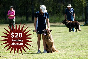 Dog Obedience Training Discount