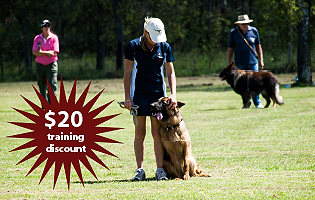 Receive a $20 Discount on Dog Obedience Training with Aylwards Dog School